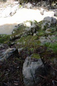 穴倉川右岸に残された橋跡(日南田の七体地蔵付近)