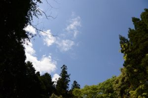日南田の七体地蔵付近(穴倉川右岸)