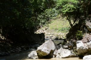 七体地蔵付近から望む穴倉川の上流方向