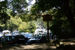 饗土橋姫神社(皇大神宮 所管社)前から遠望する宇治橋