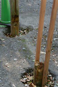 取り外された蕃塀の柱跡(今社)
