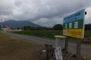花開道(伊勢市津村町)