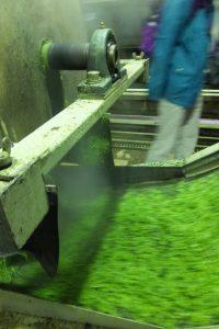 神瀬共同茶工場(大台町神瀬)