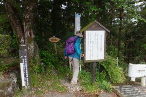 猿木坂から眼鏡橋付近へ(熊野古道伊勢路)