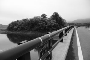 五十鈴川に架かる五十鈴橋から遠望した大土御祖神社の社叢