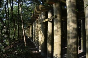 茜社・豊川茜稲荷神社の参道鳥居