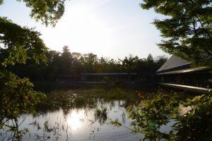 茜社・豊川茜稲荷神社の参道から望む外宮勾玉池