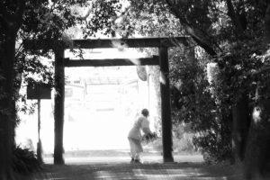 榊の交換(御塩殿神社)