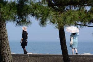 賓日館前から望む二見浦海岸