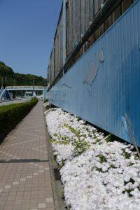 伊勢シーパラダイス付近(国道42号)