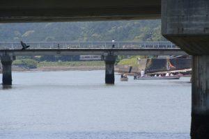 江漁港を出発した藻刈神事の船々