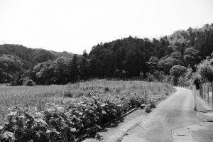江神社(皇大神宮 摂社)付近