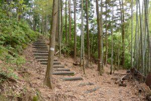 「瀧原宮周辺の神々」④弁財天への階段(滝原森林公園)