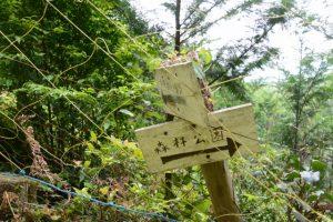 「←秋葉神社・噺野、森林公園→」の道標
