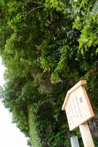 御造替された定の立札、朽羅神社(皇大神宮 摂社)