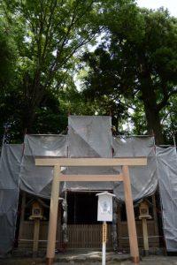 御造替された拝殿前の鳥居(坂社)