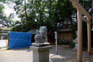御造替された蕃塀と拝殿前の鳥居(坂社)