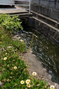 勢田川浄化用水事業豊川導水路、暗渠に