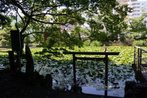 朧ヶ池(伊勢市船江)