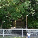 朧ヶ池越しに望む河原淵神社(豊受大神宮 摂社)