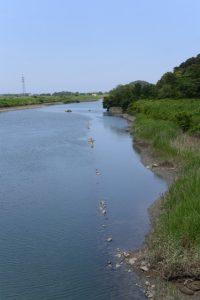堀割橋から眺める五十鈴川の下流側