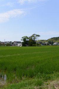 加努弥神社(皇大神宮 末社)の遠望