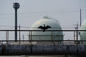 勢田川越しに望む東邦ガスのガスタンク