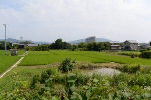 勢田川右岸から望む風景、ホテルキャッスルイン伊勢も