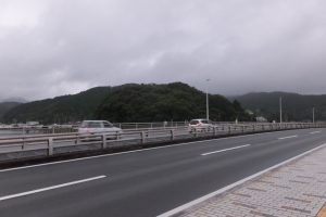 安楽島大橋から望む赤崎神社の社叢