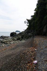 前方に潜島の鳥居(神前海岸)