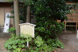 『曽祢』の石付近(坂社)