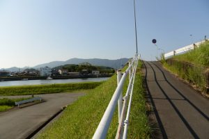 勢田川の左岸から勢田川越しに望む栄通神社の社叢