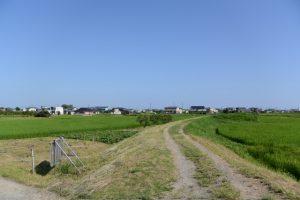中堤(伊勢市通町と一色町との境界)にて一色神社方向の遠望
