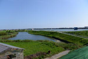 国道42号から望むイナ池と月の輪堤