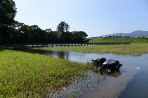 五十鈴川から塩水が引き込まれた御塩浜