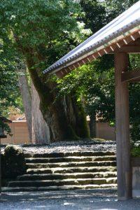 古殿地の東側の石階(外宮)