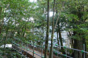 覆屋が掛けられた状態の津長神社(皇大神宮 摂社)