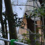 すでに新しい御垣が建てられていた津長神社(皇大神宮 摂社)