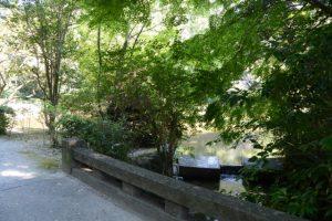 外宮 勾玉池から流れだす豊川