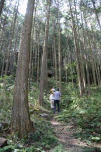 山崎の大岩への参道