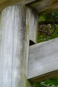 貫の楔が姿を消した鳥居、須原大社(伊勢市一之木)
