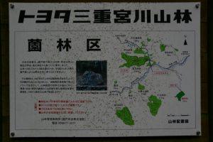 「トヨタ三重宮川山林 薗林区」の説明板