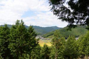 お光石付近から望む南中村の風景