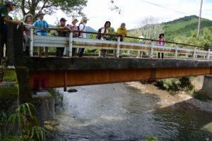 日部橋(一之瀬川)