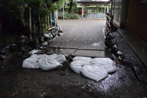 坂之森稲荷大明神と社務所の間の参道に置かれた敷鉄板