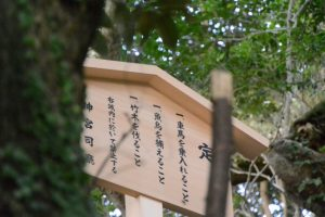 木曜日には御遷座を迎える大水神社(皇大神宮 摂社)