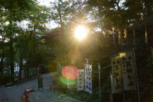朝日で眩しい宇治神社(伊勢市宇治今在家町)