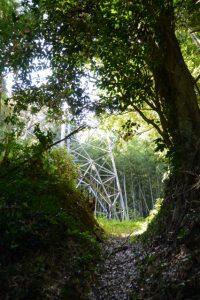 「桜木森社」案内板から送電線の鉄塔へ