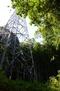 送電線の鉄塔直下(伊勢市鹿海町)
