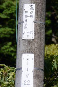電柱の掲示「NTT伊勢堅神線24MH F13-13」および「iTV22」